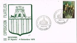 35850. Carta SEGORBE (Castellon) 1975. IX Exposicion Filatelica. Plaza Y Fuente - 1931-Hoy: 2ª República - ... Juan Carlos I