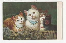 QUATRE CHATS DANS UN PANIER - Cats