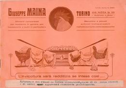 B 3089 - Avicoltura, Torino - Autres