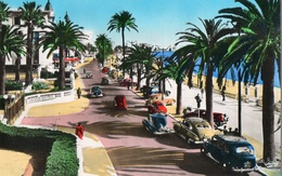 Cannes Années 50 Voitures Anciennes Peugeot 203, Citroen Traction Avant - Cannes