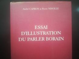 ESSAI D ILLUSTRATION DU PARLER BORAIN LIVRE HISTOIRE RÉGIONALISME BELGIQUE HAINAUT DICTIONNAIRE DIALECTE BORINAGE MONS - Woordenboeken