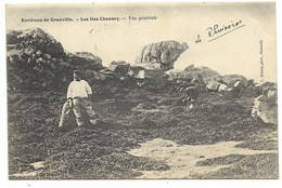 50-GRANVILLE-Environs-LES ILES CHAUSEY-Vue Générale...1904  Animé - Granville