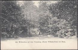 AK Am Weiherchen Auf Dem Venusberg Kaiser Wilhelm Park Bei Bonn, Ungelaufen - Alemania
