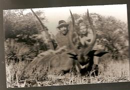 Mozambique ** & Ultramar, Imagens De Moçambique, Edição Cambaco (2302) - Mozambico