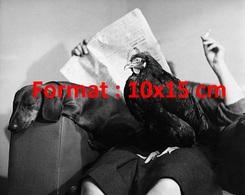 Reproduction D'une Photographie Ancienne D'une Femme Lisant Son Journal Avec Un Coq, Un Chien Teckel Sur Ses Genoux1948 - Reproductions