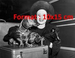 Reproduction D'une Photographie Ancienne De La Belle Joan Crawford Avec Ses Deux Chiens Teckel Sur Une Valise En 1940 - Reproductions