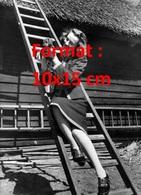 Reproduction D'une Photographie Ancienne D'une Jeune Femme Sur Une échelle Avec Un Chiot Teckel Dans Ses Mains - Reproductions