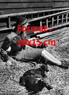 Reproduction D'une Photographie Ancienne D'une Jeune Femme Assise Sur La Paille Avec Des Chiensteckel - Reproductions
