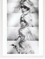 Photo De Jean-Luc Godard Brigitte Bardot Dans Le Mépris 1963 - Personalità