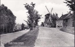 Ca. 1960 Oude Tonge Molen Korenbloem En Intrede Z/W Ongebruikt - Nederland
