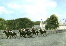 Chevaux - Les Courses à Chantilly (60) : Le Dernier Tournant - Horses