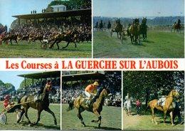 CHEVAUX - CHAMP DE COURSES A LA GUERCHE SUR L'AUBOIS - HIPPODROME - MULTIVIEW - N 089 - Horse Show