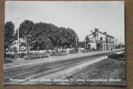 MONTANARO - INTERNO STAZIONE FERROVIARIA     1956 -- I°  PREMIO ORNAMENTAZIONE FLOREALE - BELLISSIMA - - Altre Città