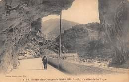 "1048""SAORGE  (A. M ) VALLE DE LA  ROJA "" ANIMATA CARTOL ORIGINALE - Nizza"