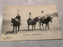 Coq S/mer Partie D'anes 1903 - De Haan