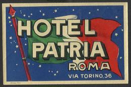 ITALY ROMA Hotel PATRIA Luggage Label - 11,5 X 7,5 Cm (see Sales Conditions) - Adesivi Di Alberghi