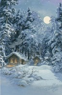 Log Cabins In Winter Landscape At Moonlight - Raimo Partanen - Double Card - Christmas