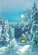 Log Cabin In Winter Landscape At Moonlight - Raimo Partanen - Double Card - Christmas