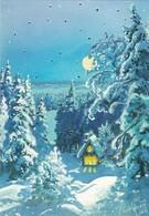 Log Cabin In Winter Landscape At Moonlight - Raimo Partanen - Double Card - Kerstmis