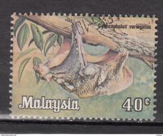 Malaysie, Malaysia, Chauve-souris, Bat - Bats