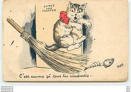 Ros - C'est Comme çà Tous Les Vendredis ... Chat - Chats