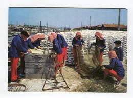 C.P °_ 33-Arcachon-Ostréiculture-Chaulage Des Tuiles-1993 - Arcachon