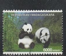 MADAGASCAR 2014 PANDA GEANT OBLITERE YT 1916 - Madagascar (1960-...)
