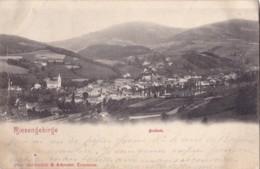 Riesengebirge Freiheit Circulée En 1901 Voir Verso - Pologne
