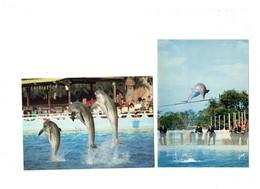Lot 2 - 06 - ANTIBES - MARINELAND - Spectacle Dauphin - Ballon - Saut Dauphins - Yvon 40-129-03 / Crouzet 3 - Delfines