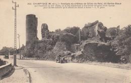 Champtocé. Vestiges Du Chateau.... - France