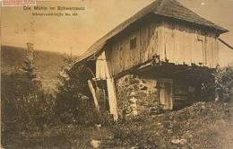 Lahr - Schwarzwald 04 - Die Muhle - Lahr