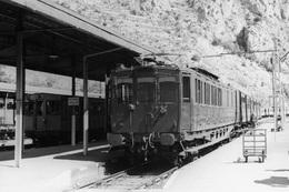 Villefranche-Vernet-les-Bains. Cliché Jacques Bazin. 26-06-1956 - Trains