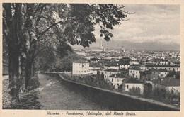 Veneto - Vicenza - Panorama, (dettaglio) Dal Monte Berico - - Vicenza
