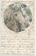 Cheval - Horse - Paard - Pferd - & Chien - Dog - Hond - Hund - 1908 - Chevaux