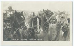 Cheval - Horse - Paard - Pferd - Salon 1904 - Rouffet - Convoi De Chevaux - Chevaux