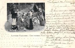 L09 : Lot Van 20 Kaarten Belgie - 5 - 99 Postkaarten