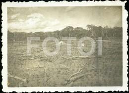 1941 ORIGINAL AMATEUR PHOTO FOTO COTTON FACTORY ALGODÃO NAMPELO ILE ZAMBEZI MOÇAMBIQUE MOZAMBIQUE AFRICA AFRIQUE AT172 - Africa