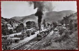 Cpsm 48 VILLFORT Anime La Gare Train - Villefort