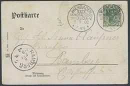 SST Bis 1918 04 BRIEF, WIESBADEN XXIX. GENERAL-VERS. DES D.u.Ö.A.-V., 8.9.1902, Auf Festtagskarte, Feinst - Briefe U. Dokumente