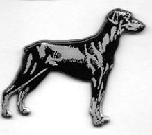 Pin's  Animal  CHIEN  Sur Ses  4  Pattes - Animales