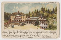 Spreter's Mendelhof Am Mendelpass B. Bozen, 1904 (Südtirol, Künstlerkarte Reisch Meran) - Italia