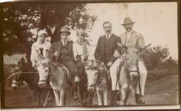 Turkey - Rare Photo Prise En 1913 à Kalki-Marmara - Format 11 X 7 Cm - Luoghi