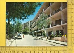 CPM  ESPAGNE, ISLAS BALEARES : Mallorca, Paguera, Hotel S'Olivera - Mallorca