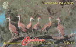 PHONE CARD CAYMAN (E58.8.2 - Isole Caiman