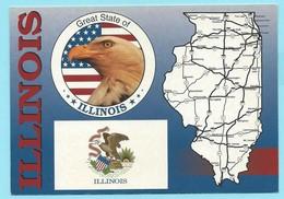 0771 - USA - ILLINOIS - MAP - Cartes Géographiques