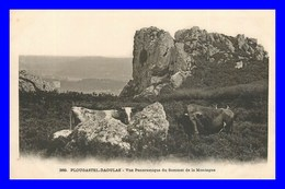 Plougastel * Vue Panoramique      ( Scan Recto Et Verso) - Plougastel-Daoulas