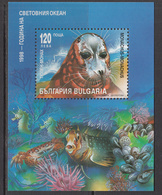 1998 Bulgaria Year Of The Ocean Seal Fish Marine Life Souvenir Sheet MNH - Nuevos