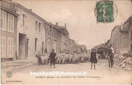 55 Souilly (verdun Dieue Sur Meuse) La Grand Rue Grande Le Lacher Du Troupeau Moutons Berger Enfants Chevres Goat RARE - Autres Communes