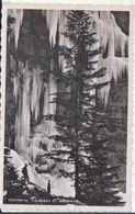 Montana - Le Bisse En Automne - VS Valais