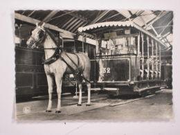 Musée Du Tram Schepdaal : Tram à Cheval De Liège 1886 - Tramways